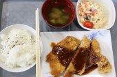 Teriyaki Huhn mit Reis. — Stockfoto