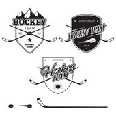 Set of ice hockey teams logos, badges and design elements — Stock Vector
