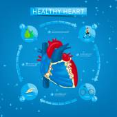 Four steps to healthy heart — Stock Vector