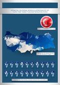 Geometric polygonal Turkey map — Stock Vector