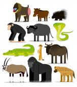 Set Of Different African Animals Isolated — Stock Vector