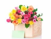 玫瑰和贺卡 — 图库照片