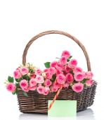 Roses in basket on white — Stock Photo