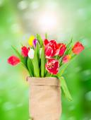 Tulips flowers in sack — Stock Photo