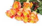 Bouquet of orange roses flowers — Stock Photo