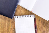Opened notebook with pen — Stock Photo