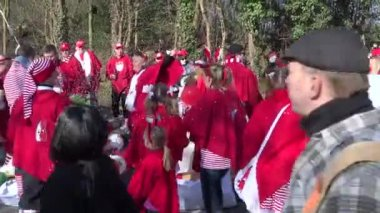 Cologne , Germany - February 2015 : Street carnival in Germany with dancing group — Stock Video