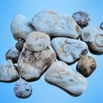 Textured Stones — Stock Photo #59586769