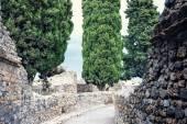 古代の通り — ストック写真