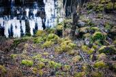Wall ruins and moss on stones — Stock Photo