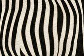 Fur Animal Textures, Zebra — Foto de Stock