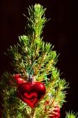 Fir met Kerstmis speelgoed — Stockfoto
