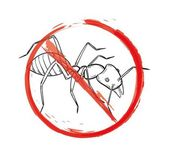 Danger sign with sketch of the ant — Stock Vector