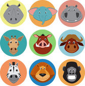 Collection of animals — Stock Vector