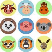 Collection of animals — Cтоковый вектор