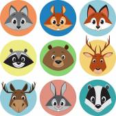 Coleção de animais — Vetorial Stock