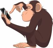 Monkey and smartphone — Stock Vector