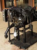 Black stallion — Stock Photo