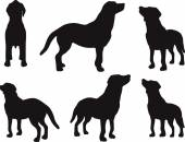 Dog silhouette — Stock Vector