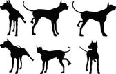Dog silhouette in leg raised pose — Stock Vector