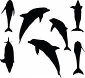Dolphin silhouette — Stock Vector