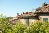 Landscape with roofs of houses in small tuscan town Castelmuzio, Italy — Stock Photo
