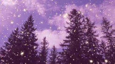 新年、 圣诞节、 3d 冬季背景,时间流逝 — 图库视频影像