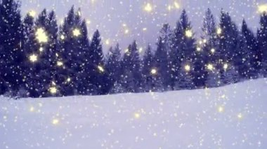 New Year winter background — Stockvideo