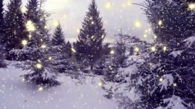 New Year winter background — Vídeo stock