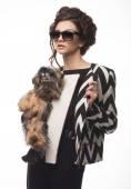 Fashion girl   and dog Yorkshire — Stock Photo