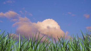 3d animation grass and time lapse clouds — Stock Video