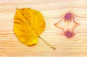 Colorful autumn leaf on wooden background — Stock Photo