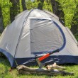 Camping tent in sunny forest — Stock Photo #72842479