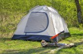 Camping tent in sunny forest — Stock Photo