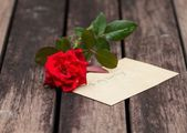 A stalk of red rose with love — Stock Photo