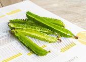 Four angle beans — Stock Photo