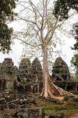 An ancient temple in Angkor Wat — Fotografia Stock