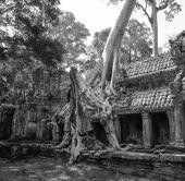 Een oude tempel — Foto de Stock