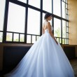 Photo of a beautiful brunette bride in a luxurious wedding dress in elegant interior — Stock Photo #59603571