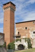 Guelph Tower and Medici Citadel in Pisa — Stock Photo