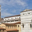 San Frediano church tower in Lucca, Italy.  — Stock Photo #58725055