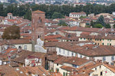 Lucca cityscape from the Guinigi tower, Italy — Stock Photo