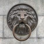 Sculpture antique lion in Odessa, Ukraine — Stock Photo #80626392