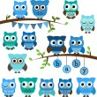 Vector Collection of Boy Baby Shower Themed Owls and Branches — Stock Vector #51922759