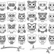 Doodle Style Vector Set of Cute Owls and Branches — Stock Vector