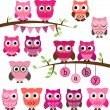 Vector Collection of Girl Baby Shower Themed Owls and Branches — Stock Vector #51923043