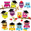 Vector Collection of School or Graduation Themed Owls — Stock Vector #51923753