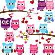 Vector Collection of Valentine's Day or Love Themed Owls — Stock Vector #51924365