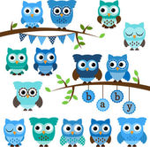 Vector Collection of Boy Baby Shower Themed Owls and Branches — Stock Vector