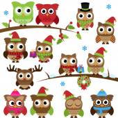 Vector Collection of Christmas Holiday Themed Owls and Branches — Stock Vector